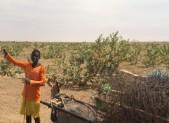 22- De Nouakchott vers Aleg.